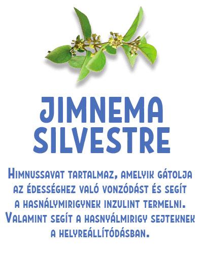 JIMNEMA SILVESTRE